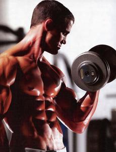 Estratégias de montagem de programas de musculação