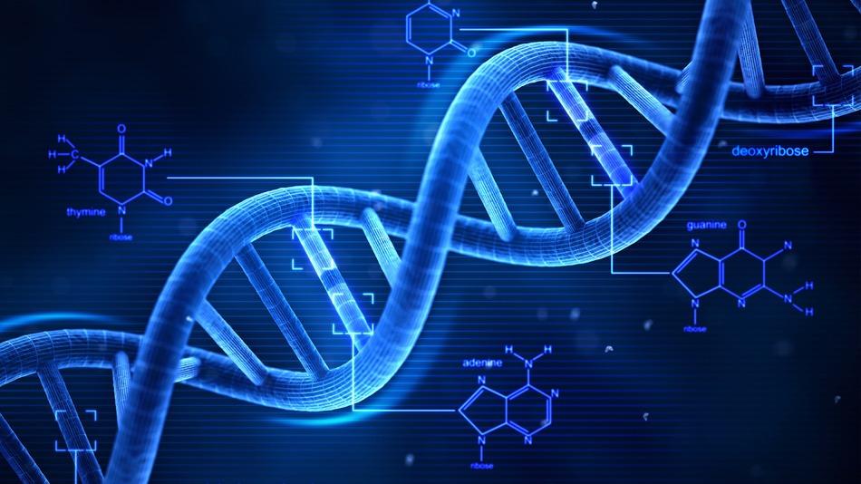 sintese-proteica
